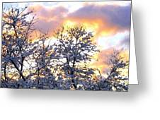 Wintry Sunset Greeting Card by Will Borden