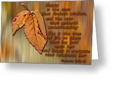 Wisdom Greeting Card by Larry Bishop