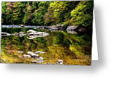 Williams River Autumn Greeting Card by Thomas R Fletcher