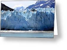 Glacier Bay National Park Greeting Card by Sophie Vigneault