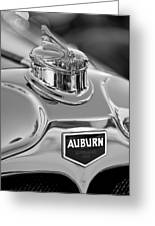 1929 Auburn 8-90 Speedster Hood Ornament 2 Greeting Card by Jill Reger