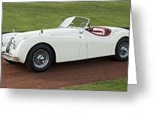 1954 Jaguar Xk120 Roadster  Greeting Card by Jill Reger