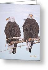 387 Two Perched Eagles Greeting Card by Sigrid Tune