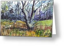 A Tree For Thee Greeting Card by Carol Wisniewski