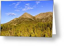 Alaska Mountains Greeting Card by Chad Dutson