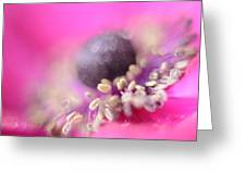 Anemone Greeting Card by Mark Johnson