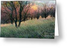 Autumn Colors Greeting Card by Igor Baranov