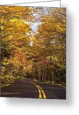 Autumn Drive Greeting Card by Andrew Soundarajan