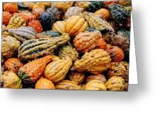 Autumn Gourds Greeting Card by Joann Vitali