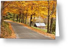 Autumn Road Greeting Card by Brian Jannsen