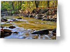 Autumn Stream Greeting Card by Frozen in Time Fine Art Photography