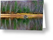 Birch Shoreline Greeting Card by Pat Now