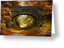 Bridge Greeting Card by Svetlana Sewell
