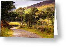 Celtic Spirit. Wicklow  Mountains. Ireland Greeting Card by Jenny Rainbow
