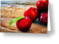 Country Charm Greeting Card by Darren Fisher