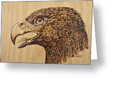 Golden Eagle Greeting Card by Ron Haist