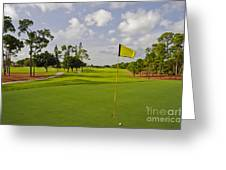Golf Course Greeting Card by M Cohen