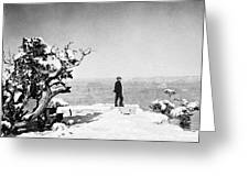 Grand Canyon: Sightseer Greeting Card by Granger