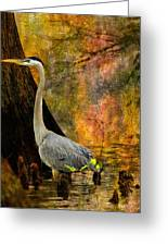 Great Blue Heron Slowly Fishing Greeting Card by J Larry Walker