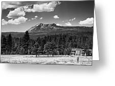 Home In The Valley Greeting Card by Mick Burkey