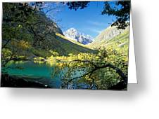 Lake View Greeting Card by Anonymous