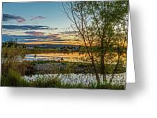 Peaceful Greeting Card by Robert Bales
