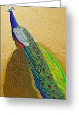 Persian Fashion Greeting Card by Vlasta Smola