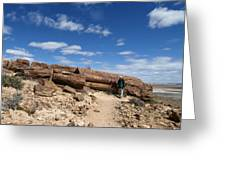 Petrified Forest, Argentina Greeting Card by Science Photo Library
