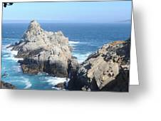 point lobos number four Greeting Card by Catherine Lau