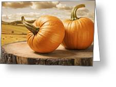 Pumpkins Greeting Card by Amanda And Christopher Elwell