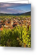 Riquewihr Alsace Greeting Card by Brian Jannsen