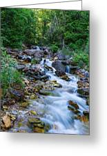 River In Bruce Peninsula Ontario Canada Greeting Card by Marek Poplawski