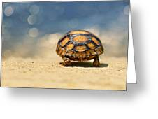 Road Warrior Greeting Card by Laura Fasulo