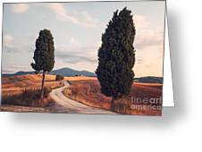 Rural Road With Cypress Tree In Tuscany Italy Greeting Card by Matteo Colombo