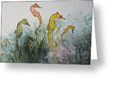 Sea Horses Greeting Card by Nancy Gorr