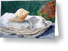 Sea Shells Greeting Card by Irina Sztukowski