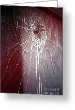 Shattered Dreams Greeting Card by Trish Mistric