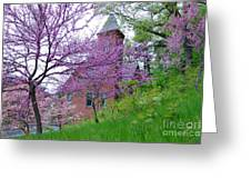 Spring Colors Greeting Card by Edward Sobuta