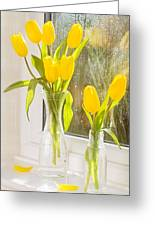Spring Tulips Greeting Card by Amanda And Christopher Elwell