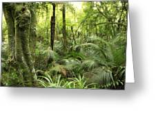 Tropical jungle Greeting Card by Les Cunliffe