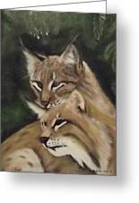 We See You Greeting Card by Frank Loria