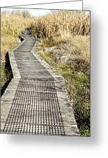 Wetland Walk Greeting Card by Les Cunliffe