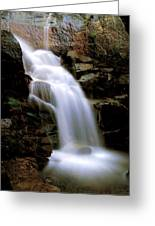 Wildcat Falls Greeting Card by Bill Gallagher