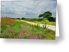 Wildflower Wonderland Greeting Card by Lynn Bauer
