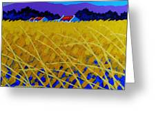 Yellow Meadow Greeting Card by John  Nolan