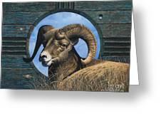 Zia Ram Greeting Card by Ricardo Chavez-Mendez