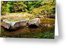 Fall along Williams River Greeting Card by Thomas R Fletcher