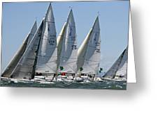 Sf Bay Sailing Greeting Card by Steven Lapkin