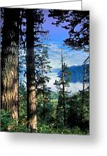 Altay Lakes Teletskoe Greeting Card by Anonymous