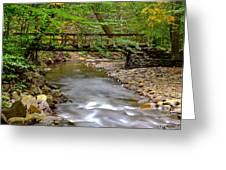Babbling Brook Greeting Card by Frozen in Time Fine Art Photography